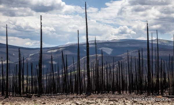 West Fork Complex Wildfire14