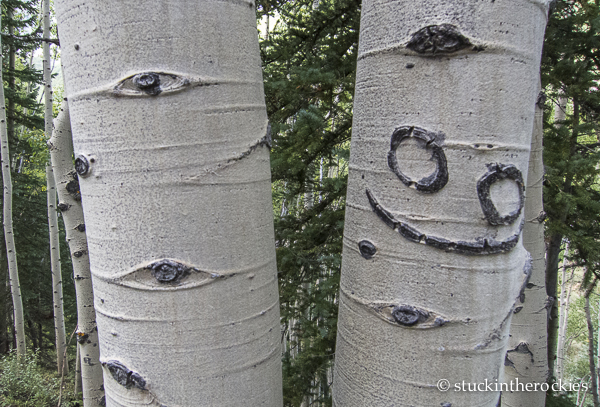 aspen tree carving, smiley face